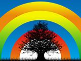 wallpaper of rainbow and tree background