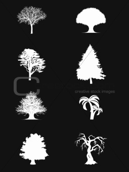 wallpaper of white trees on black background