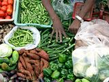 Selling Fresh Vegetable