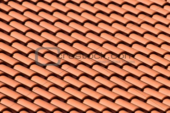 Tiled Roof Top