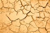 dry season with cracked ground