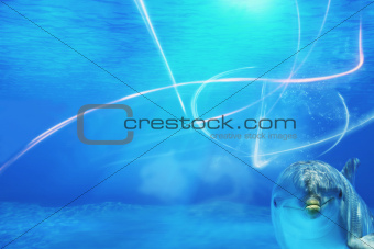 Underwater Background With Dolphin