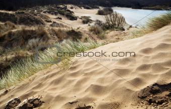 sandy dune