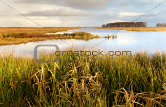 beautiful Dutch landscape close to Lekstermeer