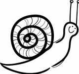 snail cartoon illustration for coloring
