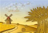 Wheat fields landscape