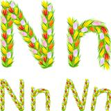 Vector font type letter N made from flower tulip