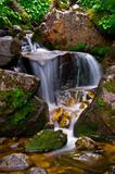 Golden Cascade