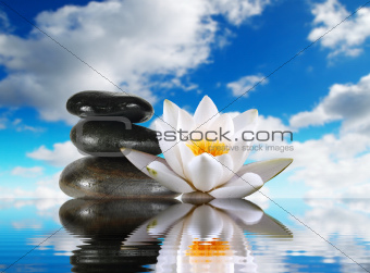 three stones and lily in water on sky background