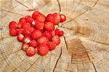 Wild strawberries are on stup seems tasty