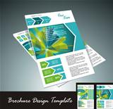 brochure design element, vector illustartion