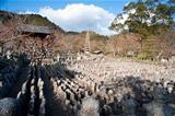 Adashino Nenbutsu-ji