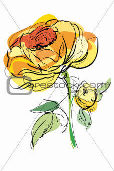 A sketch of a yellow rose on a white background