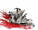 japan warrior