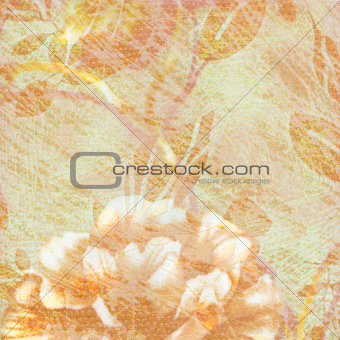 Abstract grunge textured background with rose