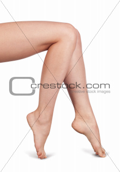 Beautiful Woman Legs Isolated on White