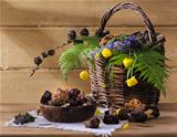 wild mushrooms with flowers in a basket