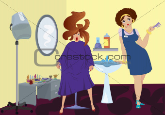 Beauty salon professional and client