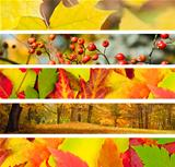 Set of 5 Different Autumn Banners