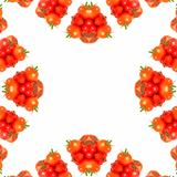 Kaleidoscopic Tomatoes