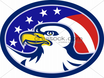 American Bald Eagle Stars Stripes Flag
