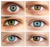 Set of 6 Real Different Open Eyes