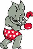 Elephant Boxer Boxing Stance