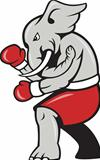 Elephant Boxer Boxing Stance 