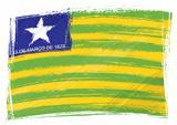 Grunge Piaui flag