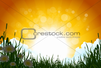 Amazing Sunrise Landscape with Grass