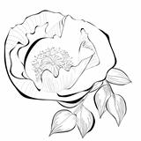 Black and white illustration of stylized flower
