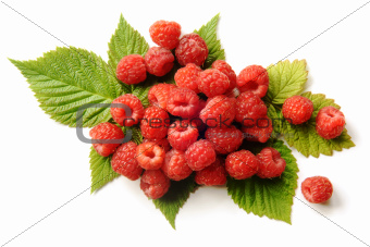 Fresh raspberries with leaves