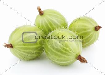 Green gooseberry fruit on white