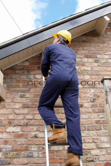Work man climbing a ladder