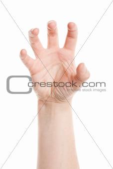 Woman palm