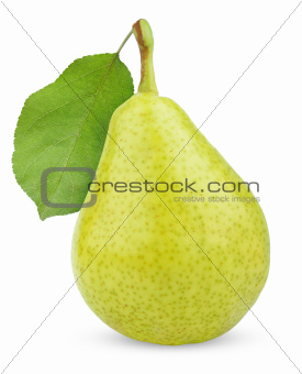 Ripe green yellow pear fruit with leaf