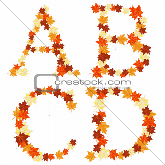Autumn maples leaves letter
