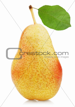 Ripe red yellow pear fruit with leaf