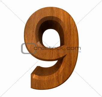 3d number 9 in wood