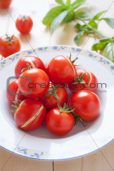 Tomatoes dish