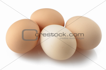 Four eggs on white