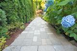 Hydrangea Flowers Along Paver Walkway