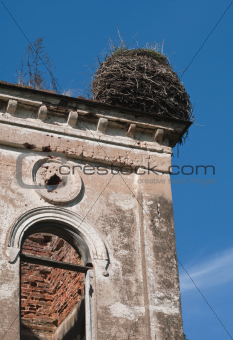 nest at the top of  an old house