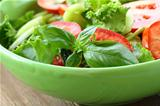 salad of fresh tomato, cucumber and basil leaves