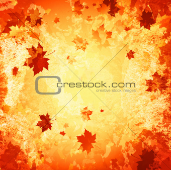 autumn abstract grunge background