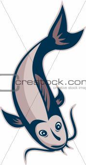 Catfish Fish Swimming Down