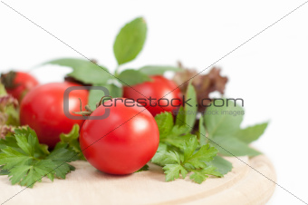 tomatoes and green parsley