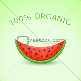 100% Organic Watermelon Slice