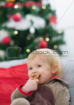 Happy baby eating cookie near Christmas tree
