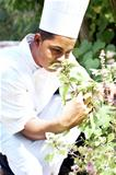 Young chef smelling the scent of fresh herbs